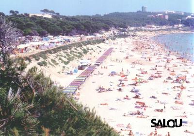 Llarga beach. 1990s