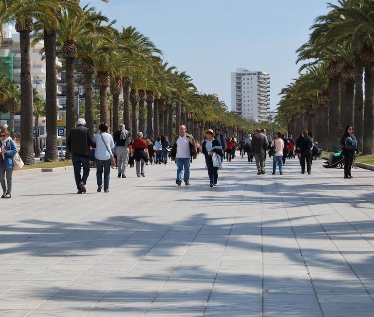Els professionals i microempreses del sector turístic podran beneficiar-se d'una nova línia de subvencions de la Generalitat, per fer front a les conseqüències econòmiques de la COVID-19