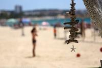 La capital de la Costa Daurada tanca l'any 2018 amb xifres que situen Salou com a destinació referent en turisme familiar
